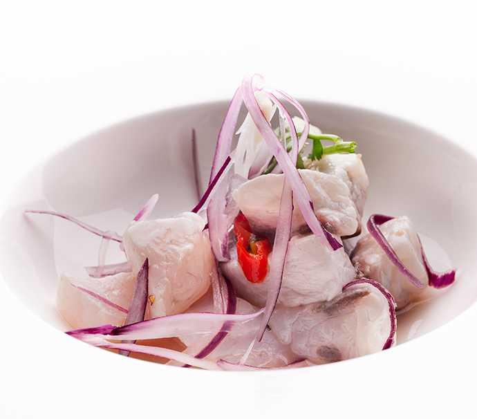 Cocina en crudo ceviches carpaccios